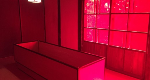 ประสบการณ์ใหม่ในญี่ปุ่น ที่พักแนว Art สุดระทึกที่ Dream House , นีกาตะ