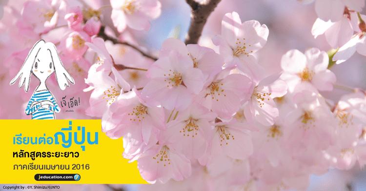 Sakura_apply2016