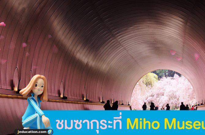 Miho Museum พิพิธภัณฑ์ศิลปะกลางป่า ควรค่าแก่การเยือน