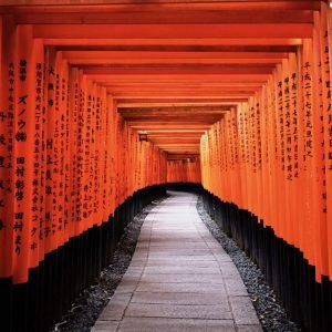 ซัมเมอร์ เกียวโต Fushimi Inari