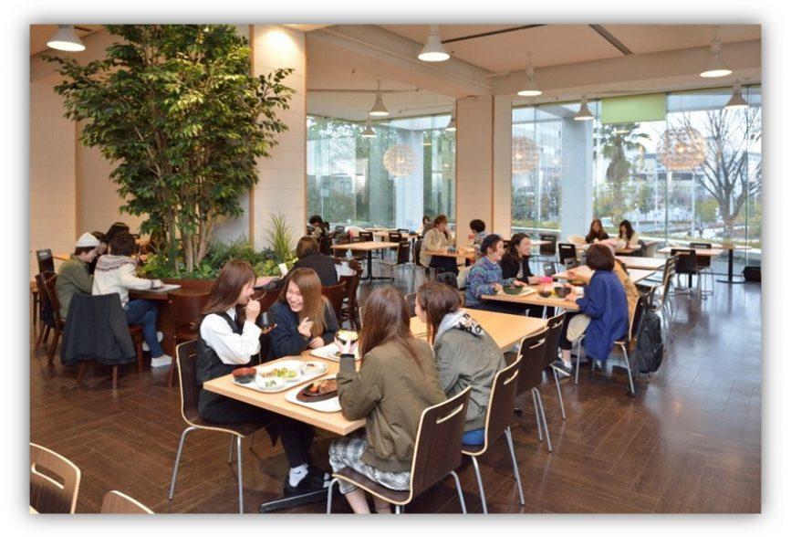 Ryutsu Kagaku University6